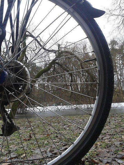 Lutowe przedwio�nie z siode�ka roweru