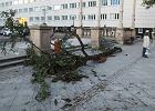 Po burzach na �l�sku: 124 interwencje stra�y, po�amane drzewa, zniszczenia