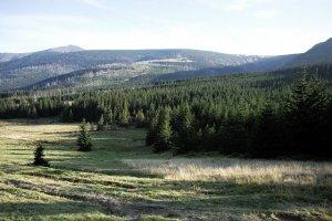 Karkonosze. 7 ciekawostek o górach pełnych magii