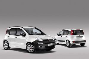 Fiat Panda Van - mi� z kratk�