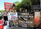 MSZ: Poprawka do projektu o uboju rytualnym nie jest sprzeczna z prawem unijnym