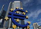Potrzebne nowe stanowisko Polski w sprawie euro. Głos polsko-niemiecki