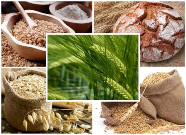 Zbo�a i produkty zbo�owe z glutenem - kt�re s� najzdrowsze?