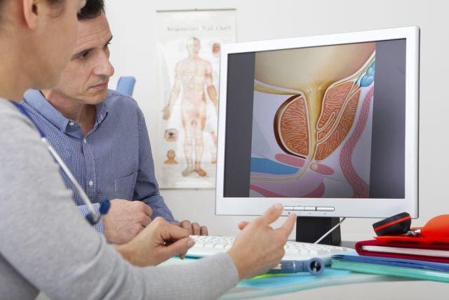 prostata normy wielkości