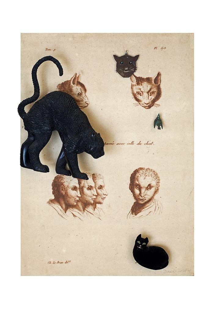 Twarz ludzka zestawiona z głową kota (Figure humaine comparée avec celle du chat), 1995, asamblaż, 140 × 100 × 25 cm / Twarz ludzka zestawiona z głową kota (Figure humaine comparée avec celle du chat), 1995, asamblaż, Courtesy D. Spoerri