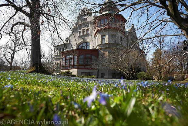 8 pięknych, ale nieoczywistych miejsc w Polsce na wiosenny piknik