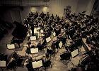I, Culture Orchestra podbi�a Skandynawi�