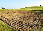 Ziemia lepsza ni� lokata. Ba�ka cenowa na rynku nieruchomo�ci rolnych?