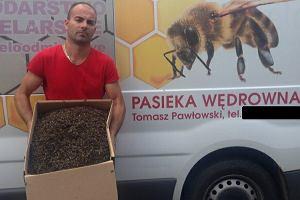 """Wytruł panu Tomaszowi miliony pszczół. """"Bóg mu pewnie wybaczy, ale natura na pewno nie"""""""