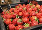 Jak znaleźć owoc idealny? Wystarczy wiedzieć, czego szukać