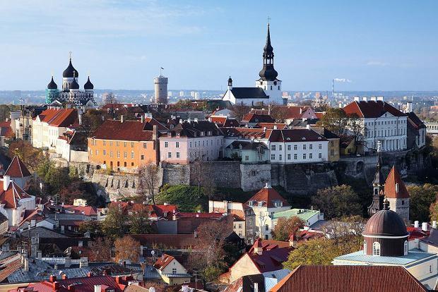 Tallin, Estonia / fot. Shutterstock