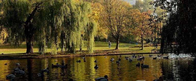 Pogoda w niedzielę. Środek października, a ciepło jak w maju. Na zachodzie ponad 20 stopni