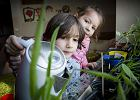 Koniec tradycyjnej szkoły? Unschooling po polsku, czyli szanse i zagrożenia alternatywnych form edukacji