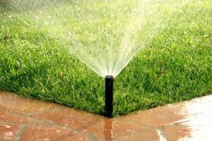 Nawo�enie - tajemnica pi�knego trawnika