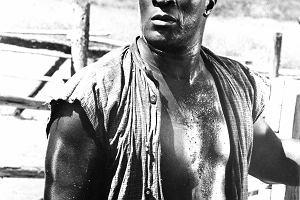 """40 lat po serialu """"Korzenie"""". John Amos - najpierw Kunta Kinte, później gwiazda kina [SYLWETKA]"""