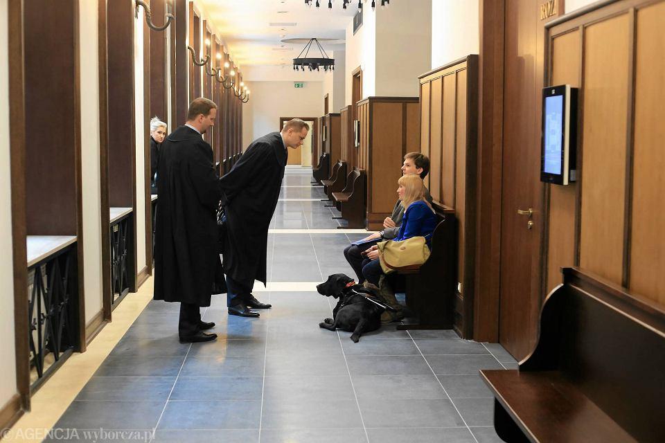 Zdjęcie numer 5 w galerii - Warszawa. Niewidomi z psami niewpuszczeni do restauracji. Jest wyrok