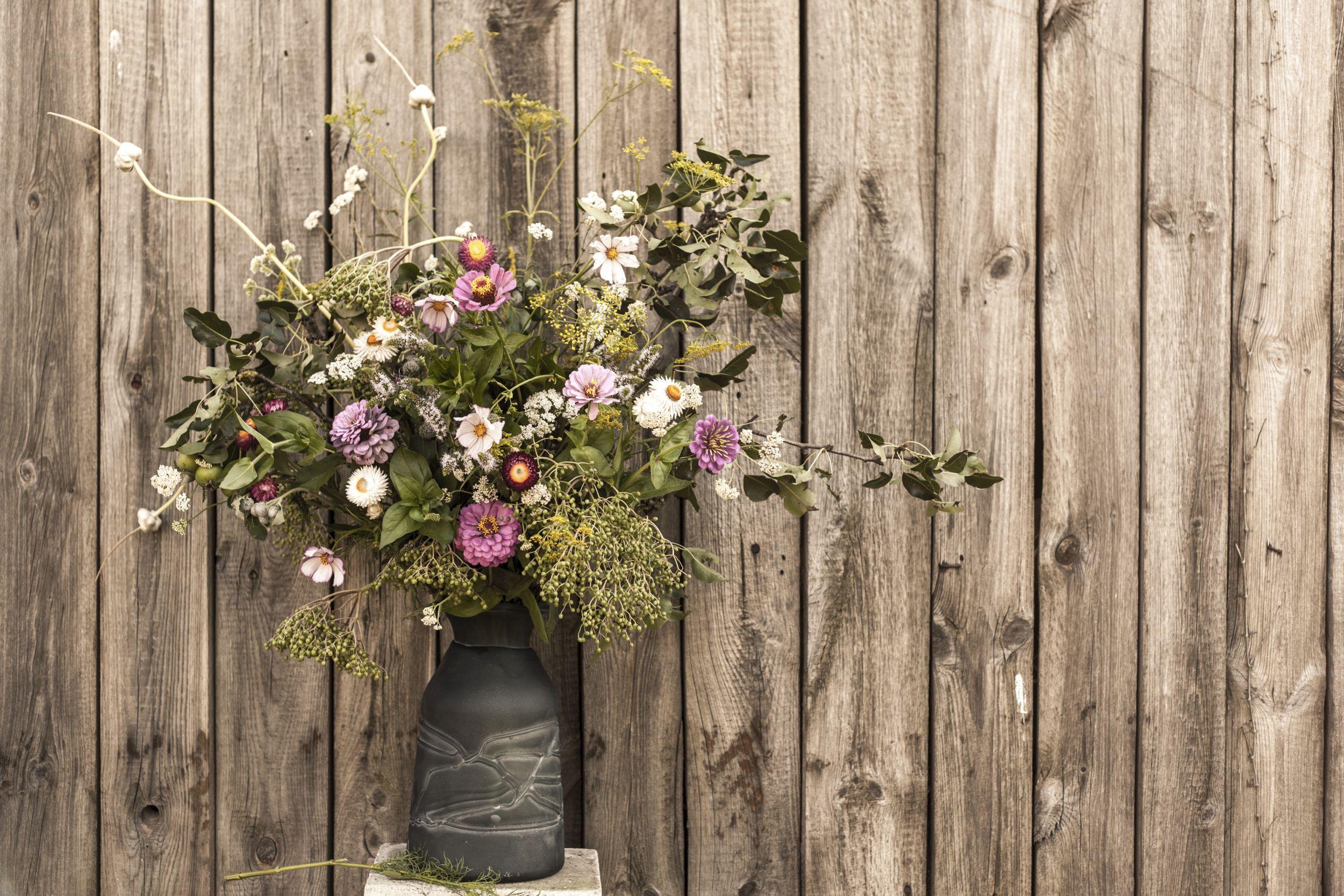 Kwiaty i Miut (fot. materiały promocyjne)