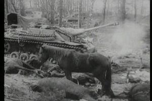 Tu Niemcy walczyli aż do końca. Ciężkie walki o Mierzeję Wiślaną