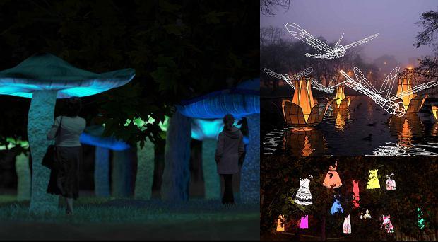 Festiwal �wiat�a w �odzi. Muzyka, kolor i senne marzenia