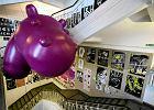 Akademia Sztuk Pi�knych: sztuka na ka�dej �cianie i lewituj�cy hipopotam