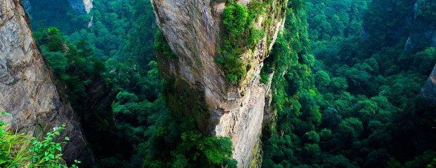 """Ten widok bardziej pasuje do odległej planety niż ziemskich krajobrazów. Park Narodowy, który stał się inspiracją dla """"Avatara"""""""