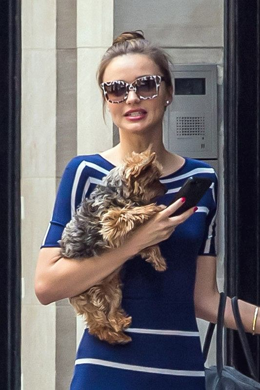 99182, NEW YORK, NEW YORK - Wednesday June 19, 2013. Miranda Kerr seen in a striped navy blue dress taking her dog Frankie for a walk in New York City. Photograph:? PacificCoastNews.com **FEE MUST BE AGREED PRIOR TO USAGE** **E-TABLET/IPAD & MOBILE PHONE APP PUBLISHING REQUIRES ADDITIONAL FEES** LOS ANGELES OFFICE: +1 310 822 0419 LONDON OFFICE: +44 20 8090 4079