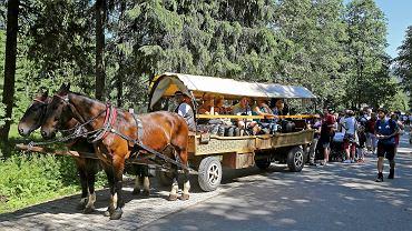 Tłumy turystów oczekujących na wyjazd na Włosienice, skąd udadzą się do Morskiego Oka.