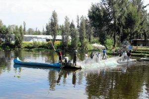 Xochimilco, raj dla skrajnych ekolog�w