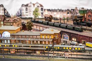 Niezwykła makieta w Muzeum Kolejnictwa. Aż 160 m torów [WIDEO]