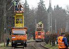 Remont pętli tramwajowej. Będą utrudnienia