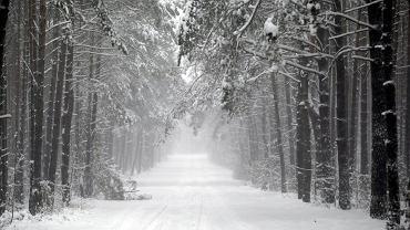 Zima. Jaka pogoda?