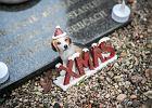 W Kielcach powstanie cmentarz i krematorium dla zwierząt?