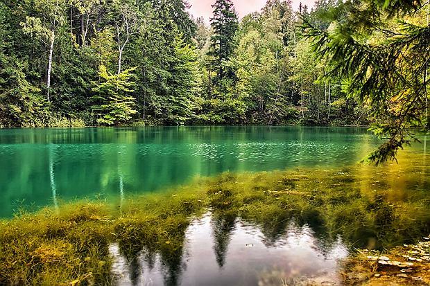 Błękitne jeziorko w Rudawskim Parku Krajobrazowym