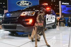 Salon Chicago 2015 | Ford Police Interceptor Utility | Sam wykryje intruza