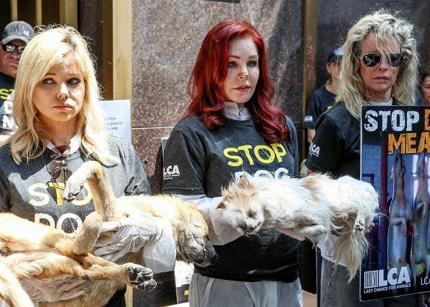 Priscilla Presley i Kim Basinger protestowały przeciwko jedzeniu psów. Aktorki, by nagłośnić sprawę stanęły przed konsulatem z martwymi czworonogami.