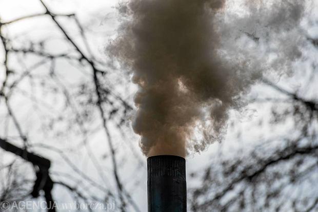 Główną przyczyną smogu jest ocieplanie mieszkań węglem