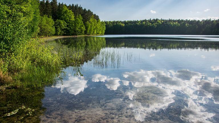 Самое прозрачное озеро в Польше. Подводный мир виден как на ладони