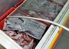 250 kg nielegalnego mi�sa przechwycono w W�lce Kosowskiej. Dw�ch Wietnamczyk�w zatrzymanych