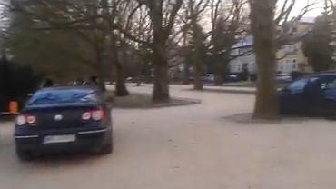 Kadr z filmu o parkowaniu w alei Platanowej