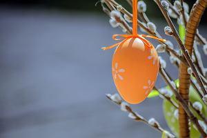 Przygotuj się na Wielkanoc: przegląd akcesoriów niezbędnych przed świętami