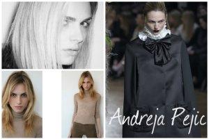 Andreja Pejic (kiedy� Andrej) powraca na wybiegi. Czy uda jej si� zrobi� karier� po zmianie p�ci?