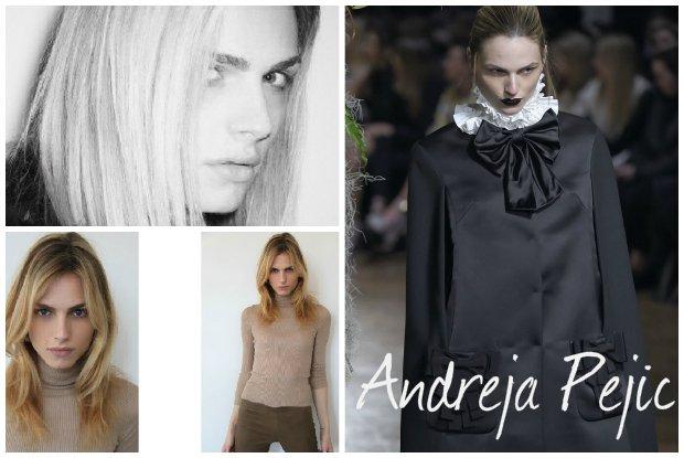 Andreja Pejic (kiedyś Andrej) powraca na wybiegi. Czy uda jej się zrobić karierę po zmianie płci?