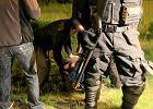 Bilans zamieszek w Knurowie: areszty, dozory policyjne i por�czenia maj�tkowe