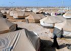 Syryjscy uchod�cy w Jordanii chc� wolno�ci i jogurtu