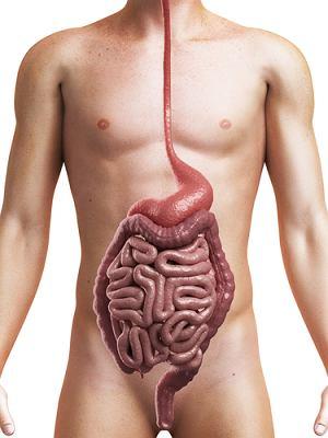 как выходят паразиты из организма при лечении
