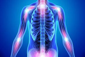 Stawy - ruchome połączenia kości. Budowa, funkcje i choroby stawów