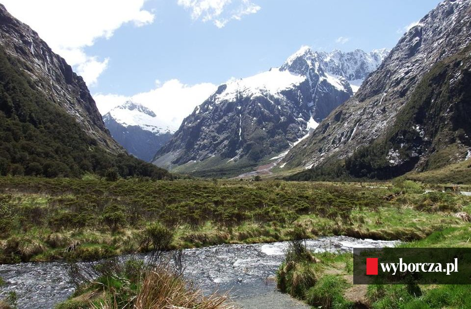 Nowa Zelandia Strzelanina Wikipedia: Mundial 2026. Nowa Zelandia Namawia Australię Na