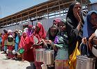 ONZ alarmuje: Świat mierzy się z największym kryzysem humanitarnym od II wojny światowej