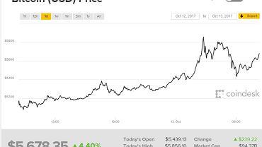 bitcoin mining server kaufen