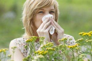 Alergiczny nie�yt nosa